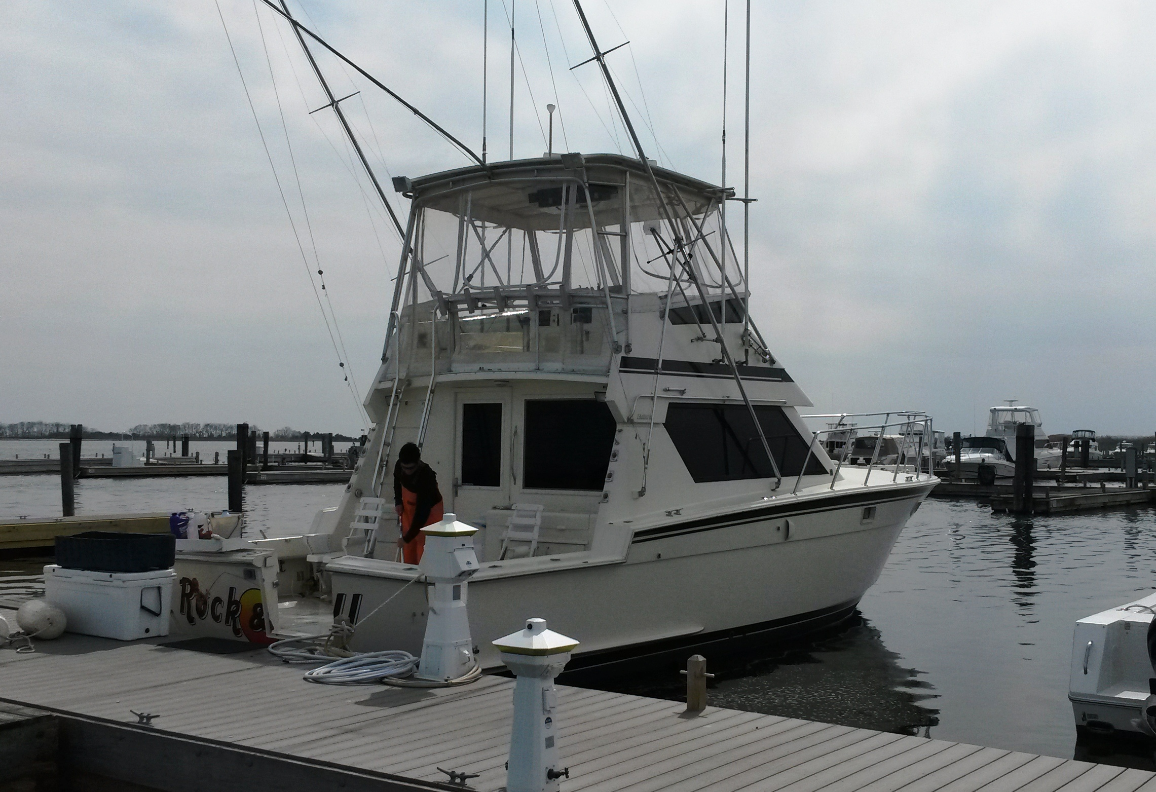 Fishing starts may 16th call today ct fishing charters for Ct fishing charters
