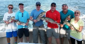 Ct fishing report 8 29 16 ct fishing charters for Ct fishing charters